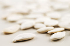 Organic white pumpkin seeds shot in an abstract manner Stock Images