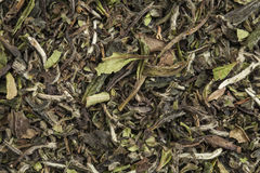 Organic white tea Royalty Free Stock Photography