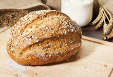 Organic whole grain bread Stock Images