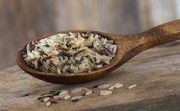 Organic Whole grain Rice Stock Image