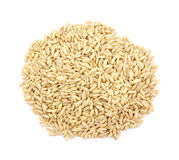 Organic whole oat groats Royalty Free Stock Image