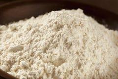 Organic Whole Wheat Flour Stock Images