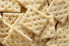 Organic Whole Wheat Soda Crackers Stock Photo