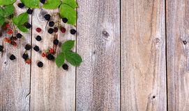 Organic wild blackberries and leafs on rustic wooden boards. Overhead view of wild blackberries and leaves in upper left hand corner of frame on rustic wood Stock Photography