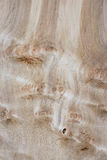 Organic Wood Grain Texture. A decorative fine wood grain textured board section Stock Photo