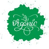 Organic word on green abstract background. Hand drawn Calligraphy lettering Vector illustration EPS10 Royalty Free Stock Photography