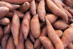 Organic Yams Royalty Free Stock Photography