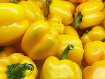 Organic yellow bell peppers in market Royalty Free Stock Image