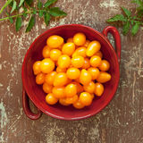 Organic yellow cherry tomatoes Royalty Free Stock Image