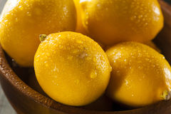 Organic Yellow Citrus Lemons Stock Image