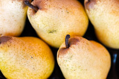 Organic yellow pears on local market ready for sell Stock Photography