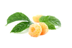 Organic yellow rasberries Stock Photo