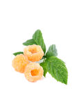Organic yellow rasberries Stock Images