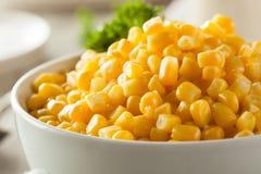 Organic Yellow Steamed Corn Royalty Free Stock Photos