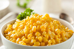 Organic Yellow Steamed Corn Royalty Free Stock Photography