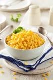 Organic Yellow Steamed Corn Stock Image