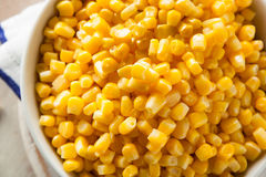 Organic Yellow Steamed Corn Stock Photography