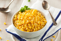 Organic Yellow Steamed Corn Royalty Free Stock Image