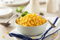 Organic Yellow Steamed Corn Stock Photos