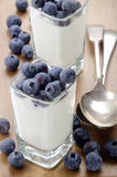 Organic yogurt and blueberries in a square shot glass Royalty Free Stock Photos