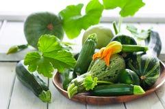 Organic zsquash Stock Image