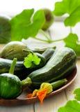 Organic zsquash Royalty Free Stock Image