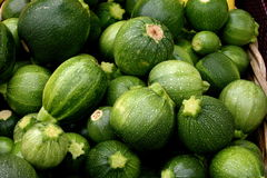 Organic Zucchini Royalty Free Stock Images