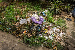 Organical and plastic waste heaps littered in a garden with bush and grass photo taken in Depok Indonesia Stock Photo