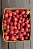 Organically Grown Beacon (MALUS domestica 'Beacon') Apples Stock Photography