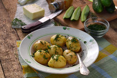 Organically grown new potatoes with butter and dill on wooden background. First spring harvest. Stock Image