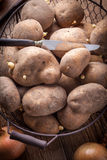 Organically grown potatoes. Stock Photography