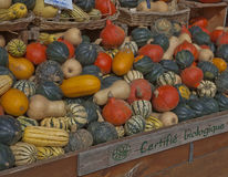 Organically Grown Produce in Montreal Stock Images