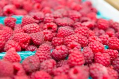 Organically grown raspberries for sale at the farmers` market. Close up of Organically grown raspberries for sale at the downtown farmers` market Stock Photos