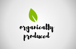 Organically produced green leaf handwritten text white backgroun Royalty Free Stock Image