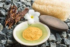 Organici sani sfregano gli elementi, elementi della stazione termale Immagini Stock