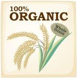 organico Fotografie Stock