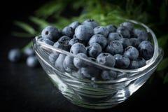 Organico antiossidante del mirtillo in una ciotola immagini stock libere da diritti