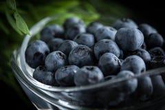 Organico antiossidante del mirtillo in una ciotola fotografie stock