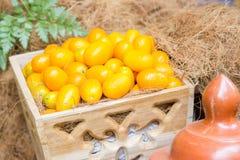 Organico arancio del kumquat Immagini Stock