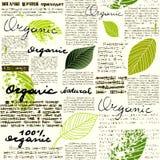 Organico e naturale Fotografie Stock Libere da Diritti