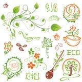 Organico, eco, vegano, natura Fotografia Stock Libera da Diritti