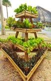 Organico fresco Fotografie Stock
