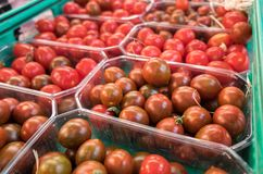Organics cherry tomatoes in plastic boxes. Sold at local city market. Provence. France royalty free stock image