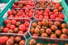 Organics cherry tomatoes in plastic boxes. Sold at local city market. Provence. France stock photo