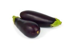 Organics eggplants isolate Stock Images