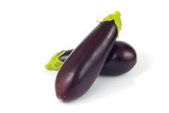 Organics eggplants isolate Royalty Free Stock Photography