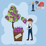 Organics Farm Concept,Smiling farmer show his fruits become from. His farm - Vector Illustration Stock Photography