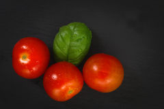 Organics Tomatoes and basil Stock Images