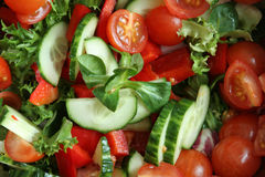 Organicsalad. Closeshot of organic salad cut and ready Stock Photography