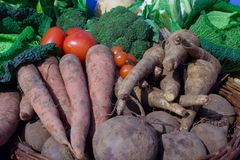 organiczne warzywa Fotografia Royalty Free